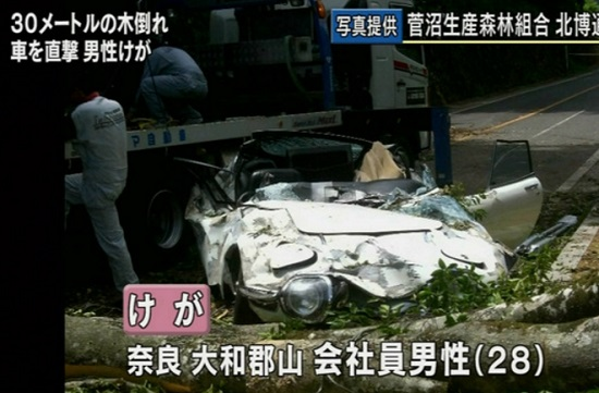 200GT倒木事故のニュース映像