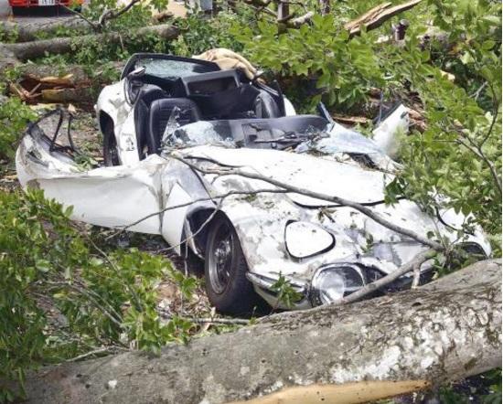倒木で大破したトヨタ200GT_2