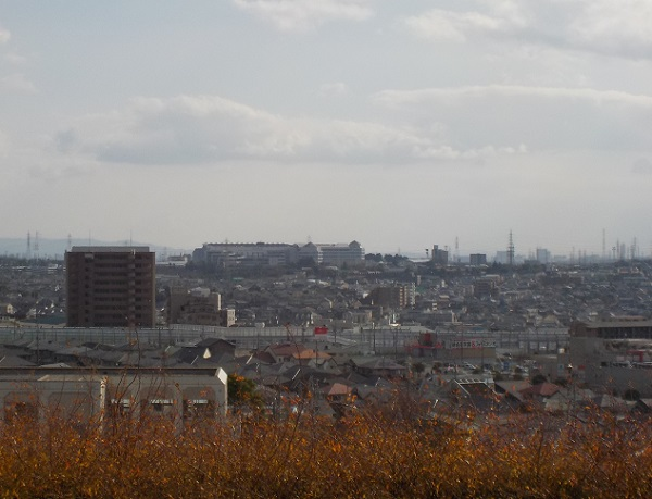 滝ノ水公園からみえる中京競馬場