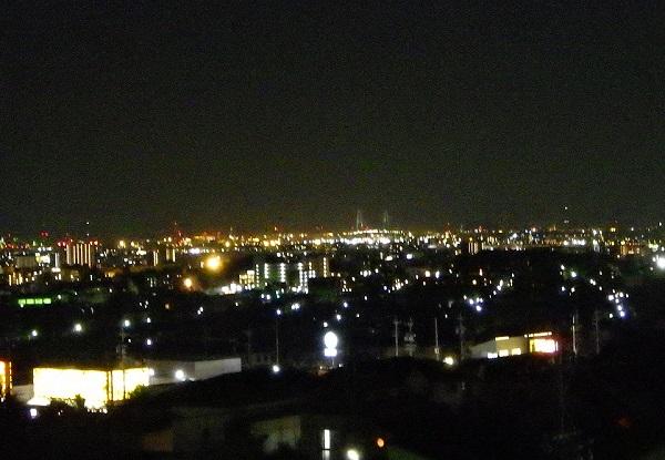 滝の水公園 夜景 名港トリトン